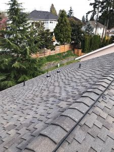 Sherwood Forest Project: CertainTeed Presidential Granite Gray with Mountain Ridge high profile ridge shingles