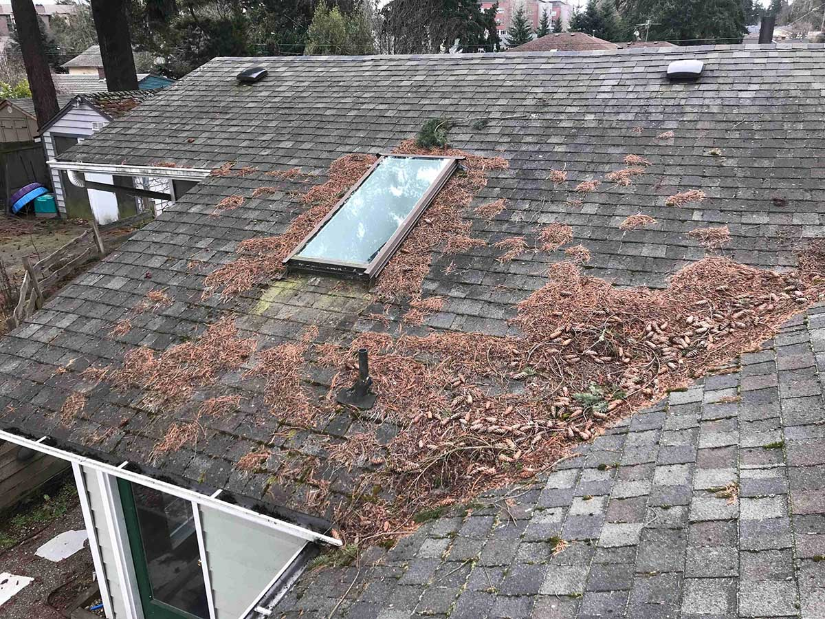Roof Maintenance for your Composite Shingle Roof